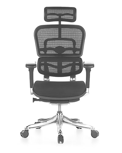 Ergohuman Elite Mesh Office Chair Front View