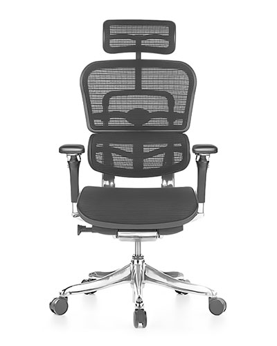 Ergohuman Luxury Mesh Office Chair Front View