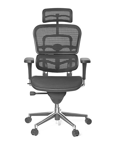 Ergohuman Classic Office Chair Front View