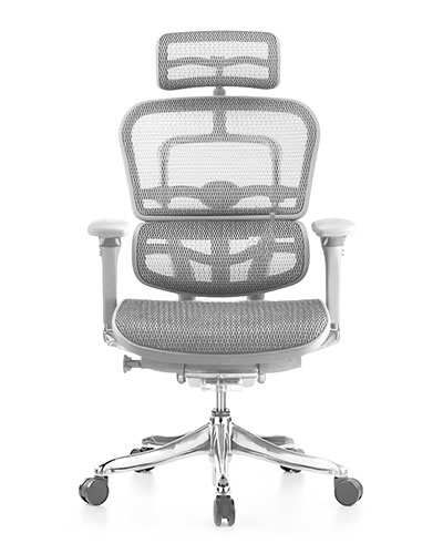 Ergohuman Luxury Platinum Mesh Office Chair Front View