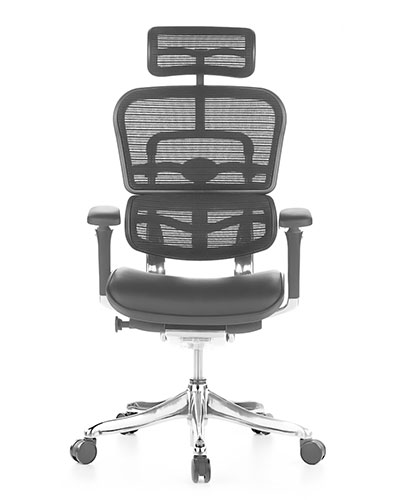 Ergohuman Luxury Leather Mesh Office Chair Front View